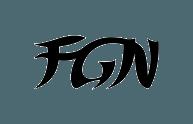 logo fgn